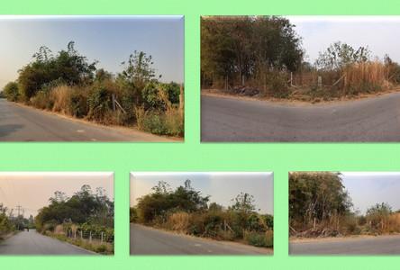 ขาย ที่ดิน 1 ไร่ จอมบึง ราชบุรี