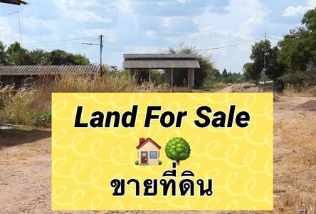 For Sale Land 6-1-0 rai in Loeng Nok Tha, Yasothon, Thailand