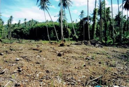 ขาย ที่ดิน 56 ไร่ เกาะช้าง ตราด