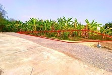 For Sale Land 400 sqm in Mae Wang, Chiang Mai, Thailand