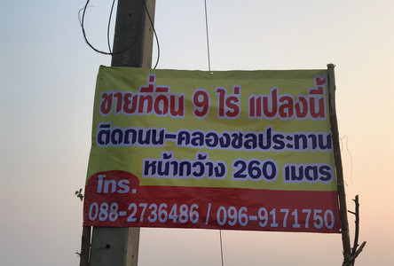 For Sale Land 9 rai in Phrom Phiram, Phitsanulok, Thailand