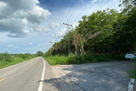 For Sale Land in Pluak Daeng, Rayong, Thailand