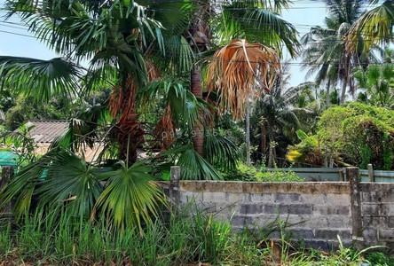ขาย ที่ดิน เกาะสมุย สุราษฎร์ธานี