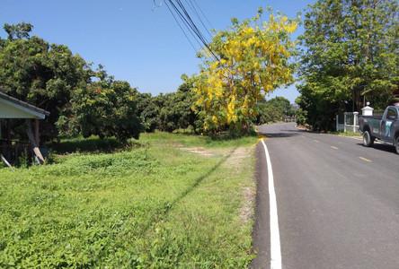For Sale Land 2-3-65 rai in Pa Sang, Lamphun, Thailand