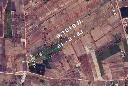 For Sale Land 62 sqm in Taphan Hin, Phichit, Thailand