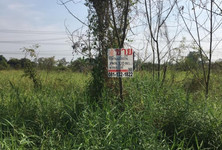 For Sale Land 1 ngaan in Nong Suea, Pathum Thani, Thailand
