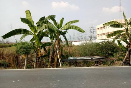For Sale Land 12-3-20 rai in Bang Pa-in, Phra Nakhon Si Ayutthaya, Thailand