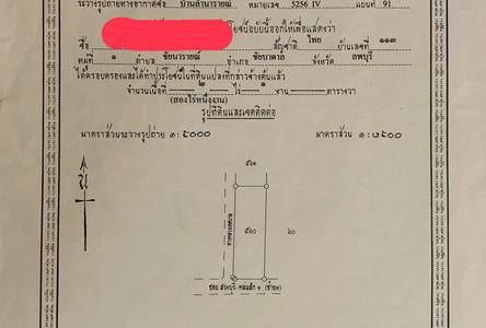 ขาย ที่ดิน 2-1-0 ไร่ ชัยบาดาล ลพบุรี