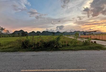 For Sale Land 1-0-81 rai in Mueang Kanchanaburi, Kanchanaburi, Thailand