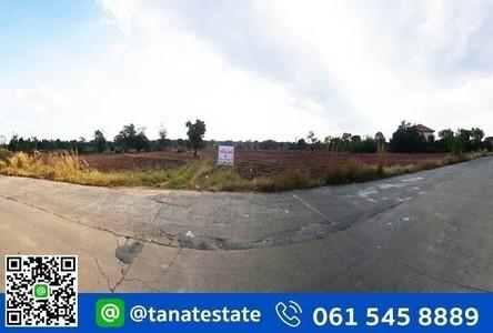 For Sale Land in Chok Chai, Nakhon Ratchasima, Thailand