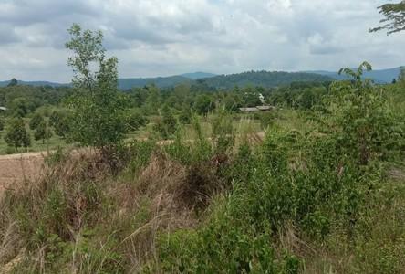 For Sale Land in Makham, Chanthaburi, Thailand
