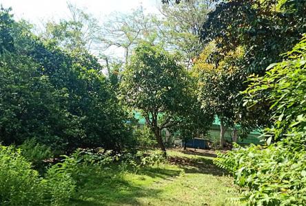 Продажа: Земельный участок 0-2-46 рай в районе Bang Khun Thian, Bangkok, Таиланд