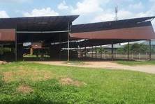 For Rent Warehouse 10,000 sqm in Lam Luk Ka, Pathum Thani, Thailand