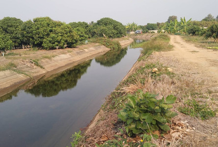 For Sale Land 17-3-60 rai in Pa Sang, Lamphun, Thailand