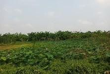 Продажа: Земельный участок 32,680 кв.м. в районе Lat Phrao, Bangkok, Таиланд
