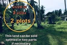 ขาย ที่ดิน 3,200 ตรม. เกาะพะงัน สุราษฎร์ธานี