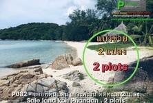 ขาย ที่ดิน 4,160 ตรม. เกาะพะงัน สุราษฎร์ธานี