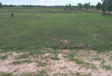 ขาย ที่ดิน 14,220 ตรม. เกษตรวิสัย ร้อยเอ็ด