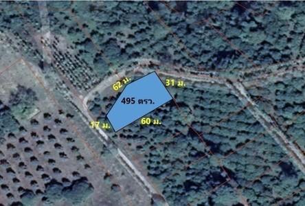 For Sale Land 1,980 sqm in Khao Khitchakut, Chanthaburi, Thailand