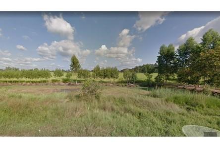 For Sale Land 128,000 sqm in Nong Bua, Nakhon Sawan, Thailand
