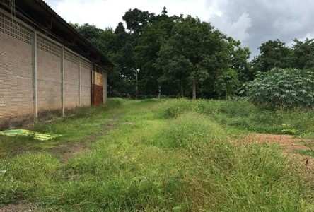 For Sale Land 2,400 sqm in Mueang Lamphun, Lamphun, Thailand