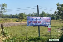 For Sale Land 7,734 sqm in Bueng Kan, Northeast, Thailand