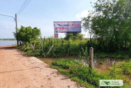 For Sale Land 3,888 sqm in Ban Dung, Udon Thani, Thailand