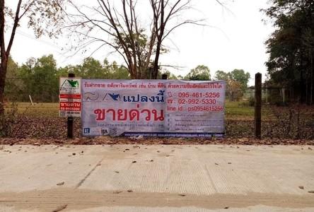 For Sale Land 3,200 sqm in Mueang Nakhon Phanom, Nakhon Phanom, Thailand