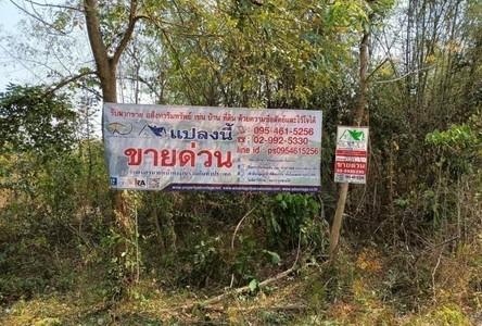 ขาย ที่ดิน 29,384 ตรม. ธวัชบุรี ร้อยเอ็ด