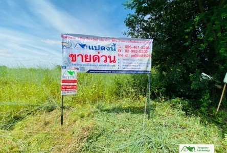 For Sale Land 1,659 sqm in Mueang Udon Thani, Udon Thani, Thailand