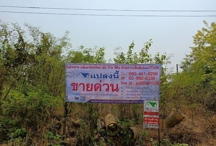 For Sale Land 1,200 sqm in Huai Mek, Kalasin, Thailand