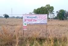For Sale Land 3,024 sqm in That Phanom, Nakhon Phanom, Thailand