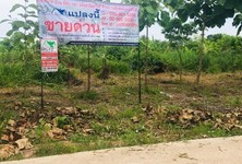 For Sale Land 6,400 sqm in Wang Thong, Phitsanulok, Thailand