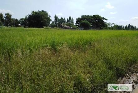 For Sale Land 888 sqm in Ban Fang, Khon Kaen, Thailand