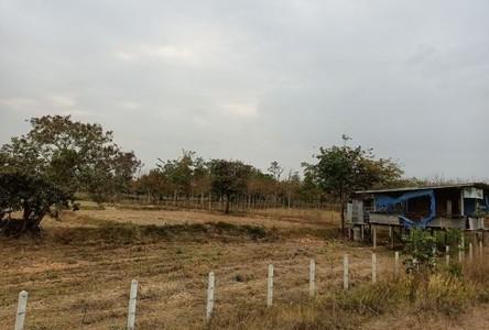 For Sale Land 25,120 sqm in Kantharalak, Sisaket, Thailand