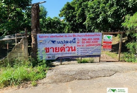 For Sale Land 2,860 sqm in Thoeng, Chiang Rai, Thailand