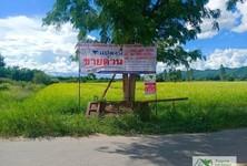 ขาย ที่ดิน 9,200 ตรม. ด่านมะขามเตี้ย กาญจนบุรี