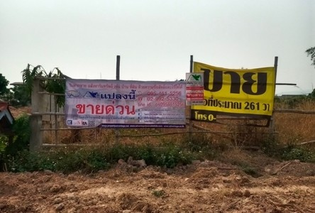 For Sale Land 964 sqm in Chiang Kham, Phayao, Thailand
