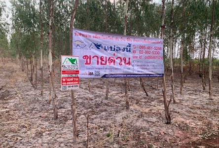 For Sale Land 53,968 sqm in Mueang Amnat Charoen, Amnat Charoen, Thailand
