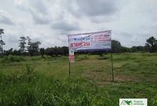 For Sale Land 12,002 sqm in Sai Mun, Yasothon, Thailand