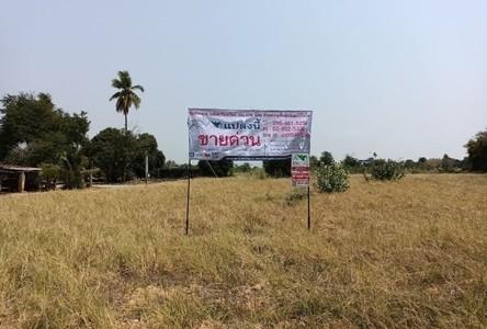 For Sale Land 3,923 sqm in Mueang Phitsanulok, Phitsanulok, Thailand