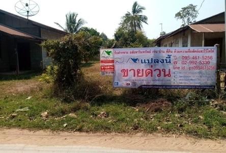 For Sale Land 920 sqm in Huai Mek, Kalasin, Thailand