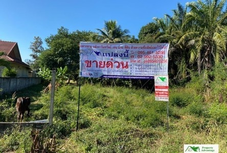 For Sale Land 5,600 sqm in Nong Wua So, Udon Thani, Thailand