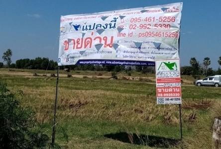 For Sale Land 3,092 sqm in Phutthaisong, Buriram, Thailand