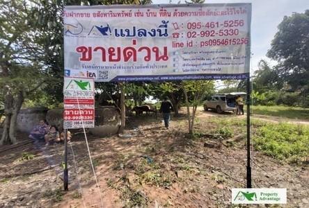 For Sale Land 36,952 sqm in Ban Kruat, Buriram, Thailand