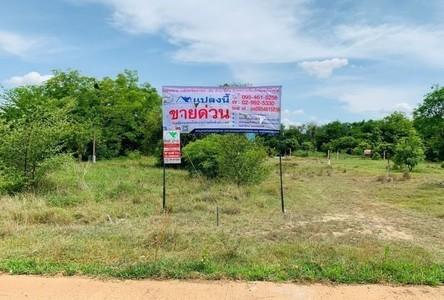 For Sale Land 416 sqm in Kaeng Khoi, Saraburi, Thailand