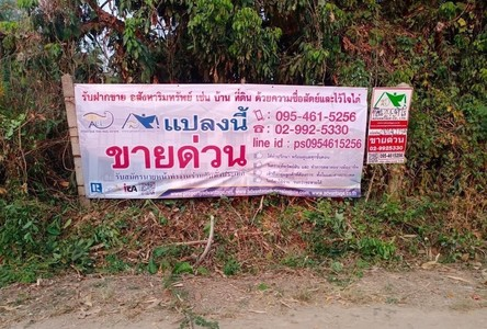 For Sale Land 3,756 sqm in Mueang Phayao, Phayao, Thailand