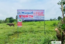 For Sale Land 8,000 sqm in Nong Ruea, Khon Kaen, Thailand