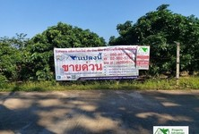 For Sale Land 3,116 sqm in Pa Sang, Lamphun, Thailand