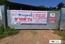 For Sale Land 1,668 sqm in Pai, Mae Hong Son, Thailand